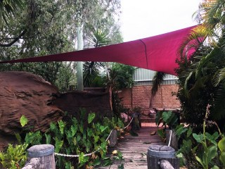 Brisbane shade sail - North Maclean in tropical garden installed by Superior Shade Sails