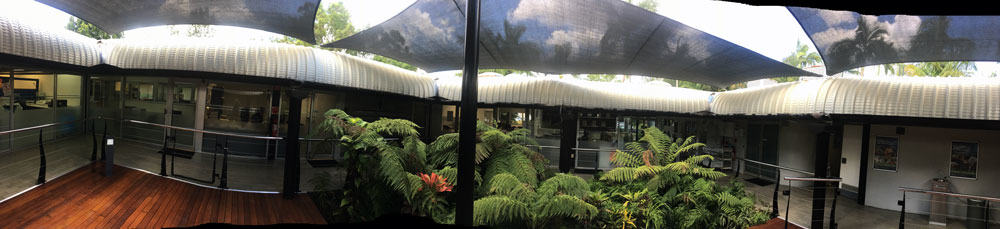 Queensland Government project - Ipswich, Installation of shade sails for deck and tropical plant retreat.