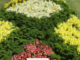 Carnival of Flowers, Toowoomba-Snapdragons & Parsley - Image: Superior Shade Sails