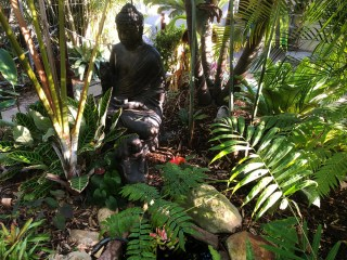 Beautiful Bali Style garden in Karalee, Ipswich