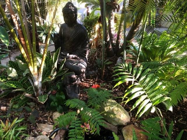 Beautiful Bali Style garden in Karalee, Ipswich